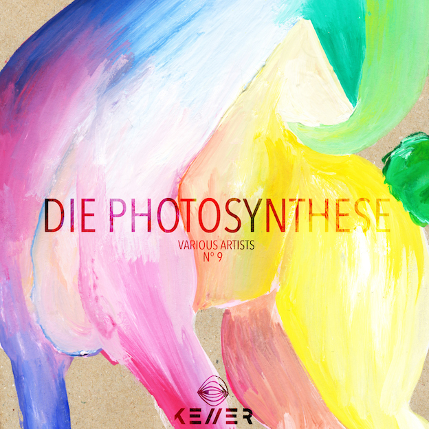 Die Photosynthese